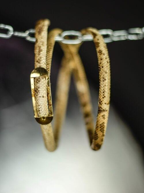 Curea din 100% piele de șarpe  | Mărime universală